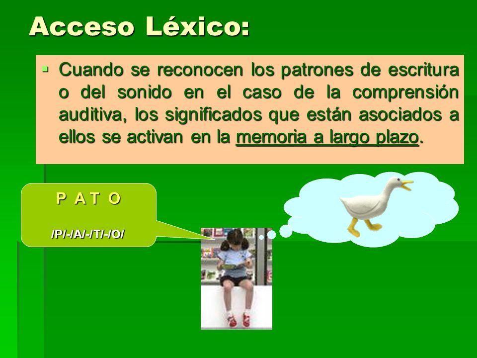 Acceso Léxico: Cuando se reconocen los patrones de escritura o del sonido en el caso de la comprensión auditiva, los significados que están asociados a ellos se activan en la memoria a largo plazo.