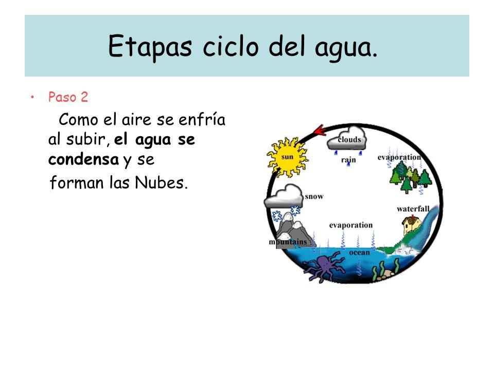 Etapas ciclo del agua. Paso 2 Como el aire se enfría al subir, el agua se condensa y se forman las Nubes.