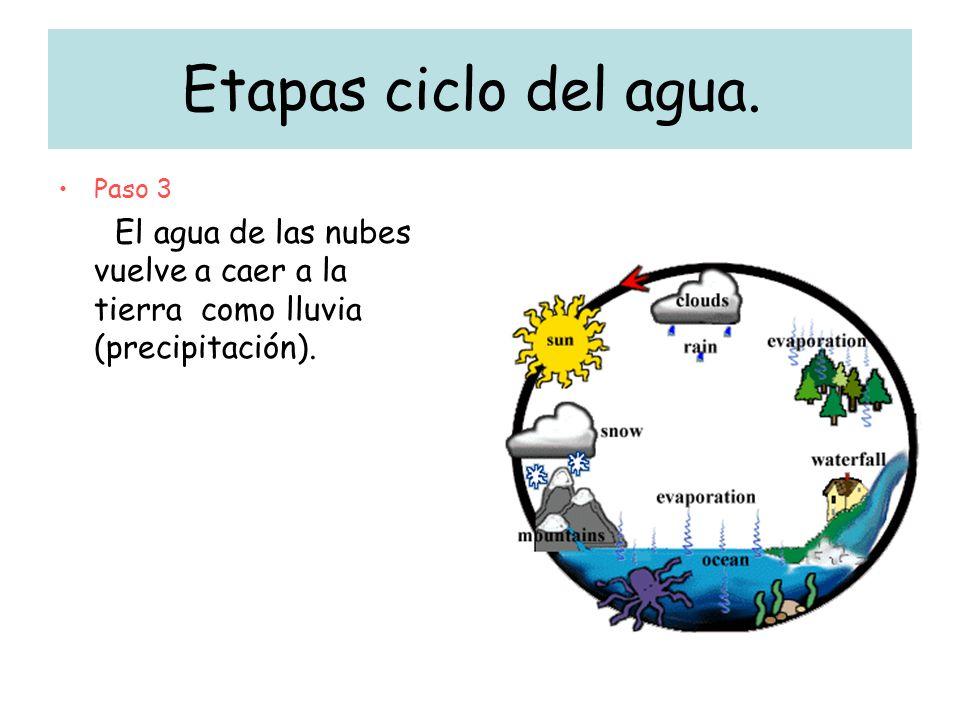 Etapas ciclo del agua. Paso 3 El agua de las nubes vuelve a caer a la tierra como lluvia (precipitación).
