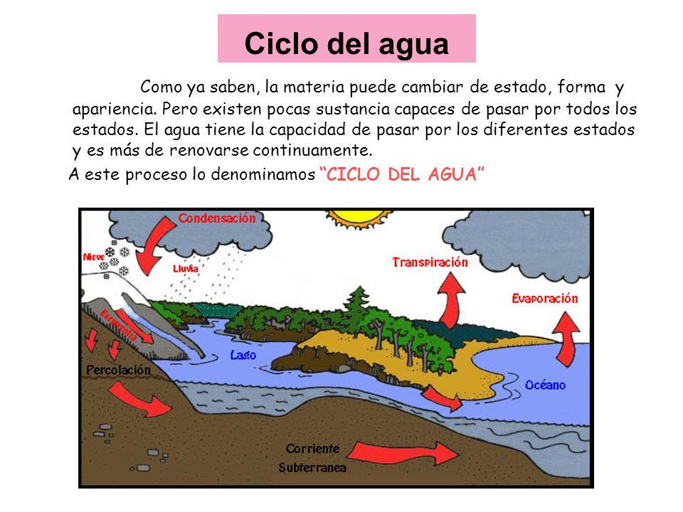 Ciclo del agua Como ya saben, la materia puede cambiar de estado, forma y apariencia. Pero existen pocas sustancia capaces de pasar por todos los esta