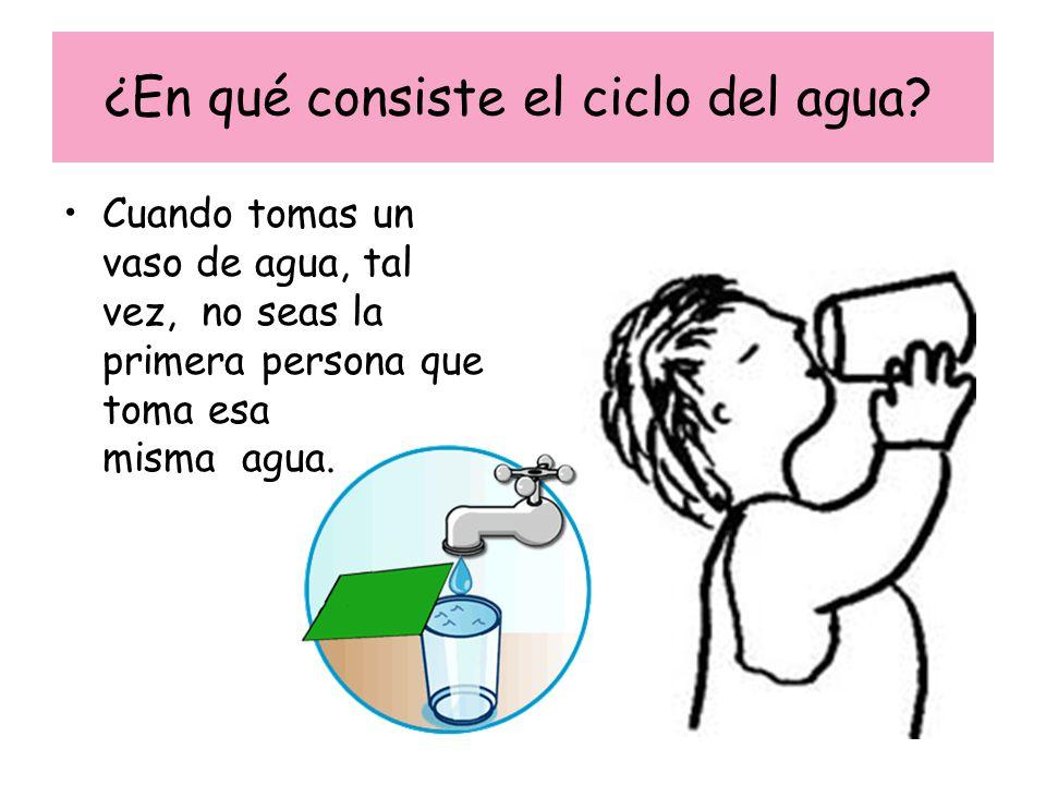 ¿En qué consiste el ciclo del agua? Cuando tomas un vaso de agua, tal vez, no seas la primera persona que toma esa misma agua.