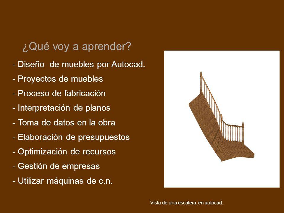 - Diseño de muebles por Autocad. - Proyectos de muebles - Proceso de fabricación - Interpretación de planos - Toma de datos en la obra - Elaboración d