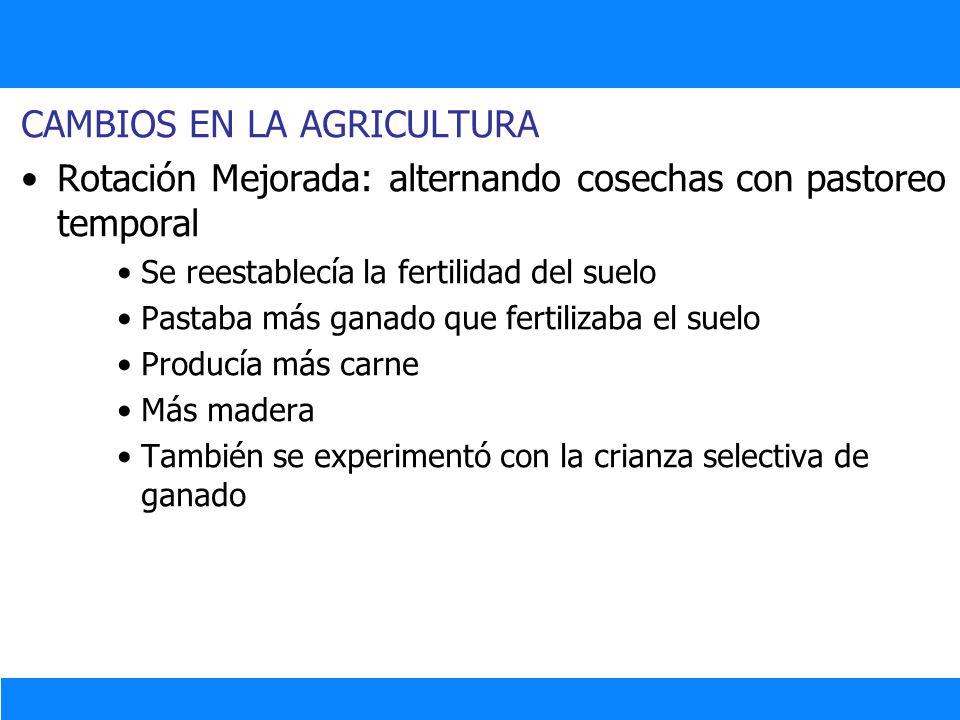 CAMBIOS EN LA AGRICULTURA Rotación Mejorada: alternando cosechas con pastoreo temporal Se reestablecía la fertilidad del suelo Pastaba más ganado que