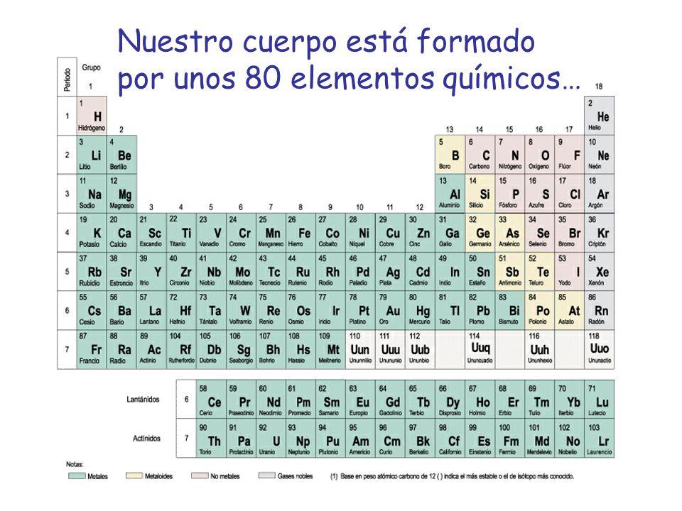 Nuestro cuerpo está formado por unos 80 elementos químicos…