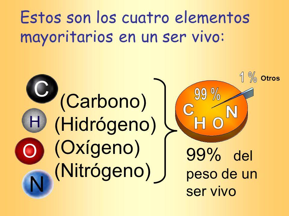 Estos son los cuatro elementos mayoritarios en un ser vivo: (Carbono) (Hidrógeno) (Oxígeno) (Nitrógeno) 99% del peso de un ser vivo C H O N Otros