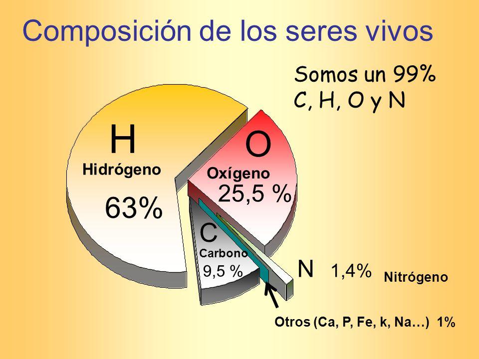 Somos un 99% C, H, O y N Composición de los seres vivos 63% H C 9,5 % O 25,5 % N 1,4% Hidrógeno Oxígeno Carbono Nitrógeno Otros (Ca, P, Fe, k, Na…) 1%