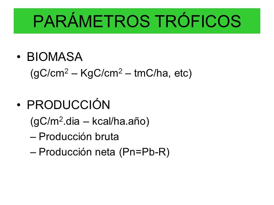 PARÁMETROS TRÓFICOS BIOMASA (gC/cm 2 – KgC/cm 2 – tmC/ha, etc) PRODUCCIÓN (gC/m 2.dia – kcal/ha.año) –Producción bruta –Producción neta (Pn=Pb-R)