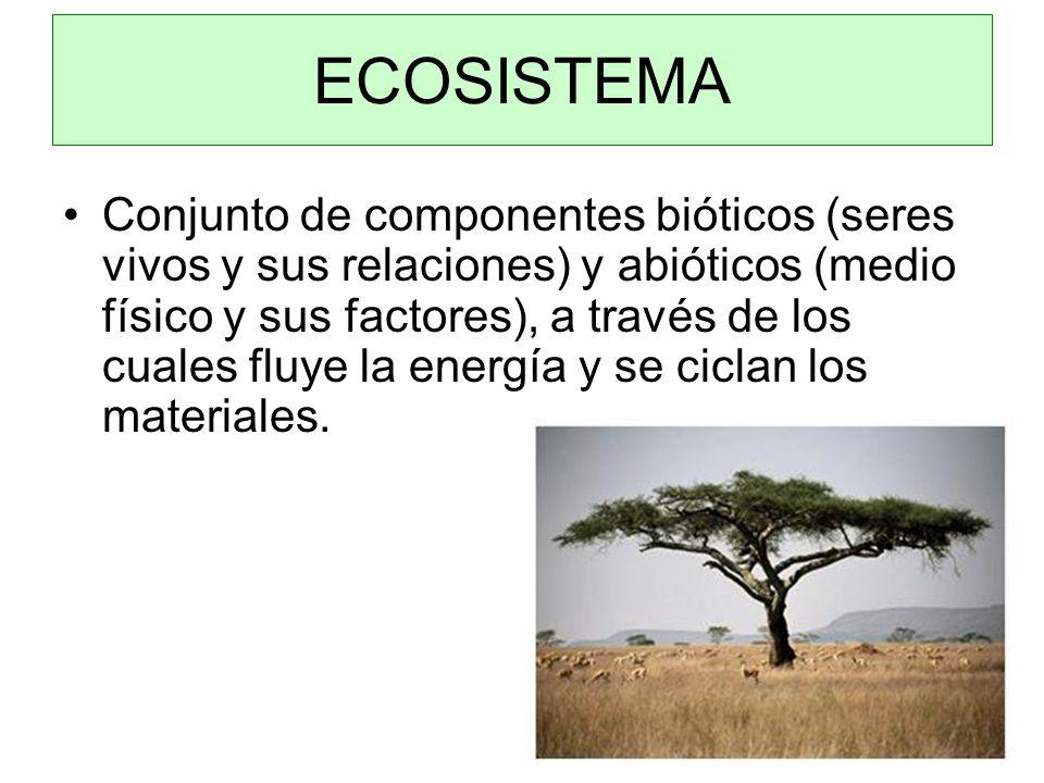 Conjunto de componentes bióticos (seres vivos y sus relaciones) y abióticos (medio físico y sus factores), a través de los cuales fluye la energía y se ciclan los materiales.