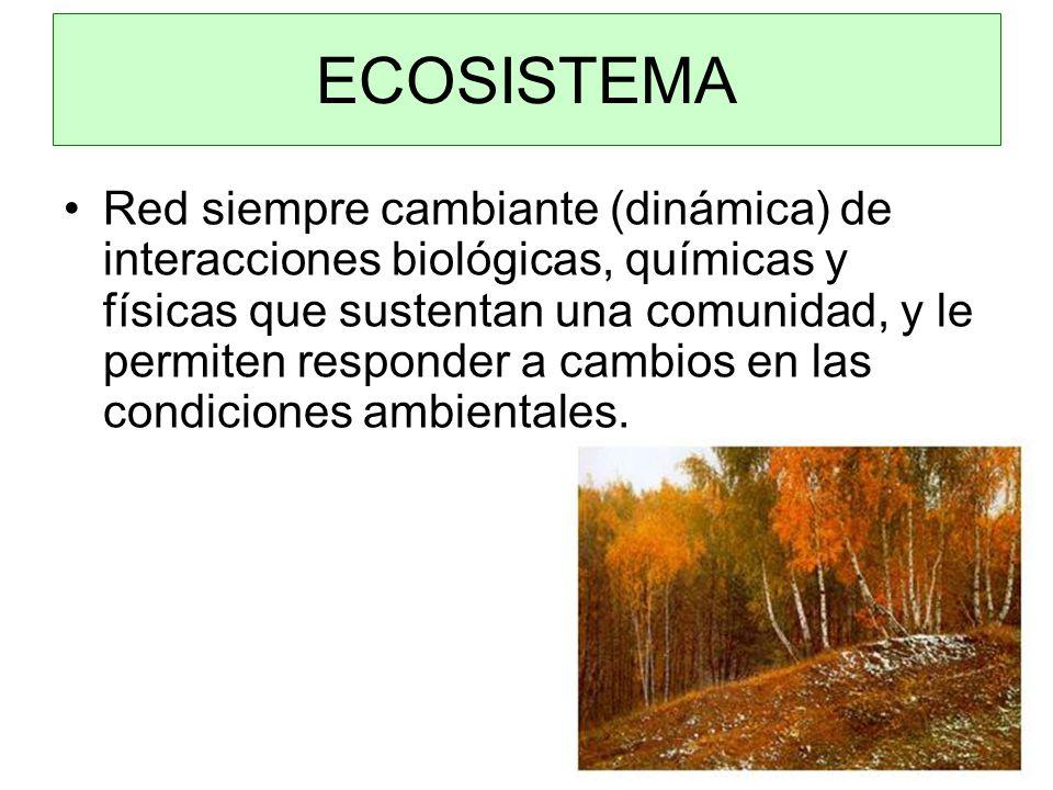 Red siempre cambiante (dinámica) de interacciones biológicas, químicas y físicas que sustentan una comunidad, y le permiten responder a cambios en las condiciones ambientales.