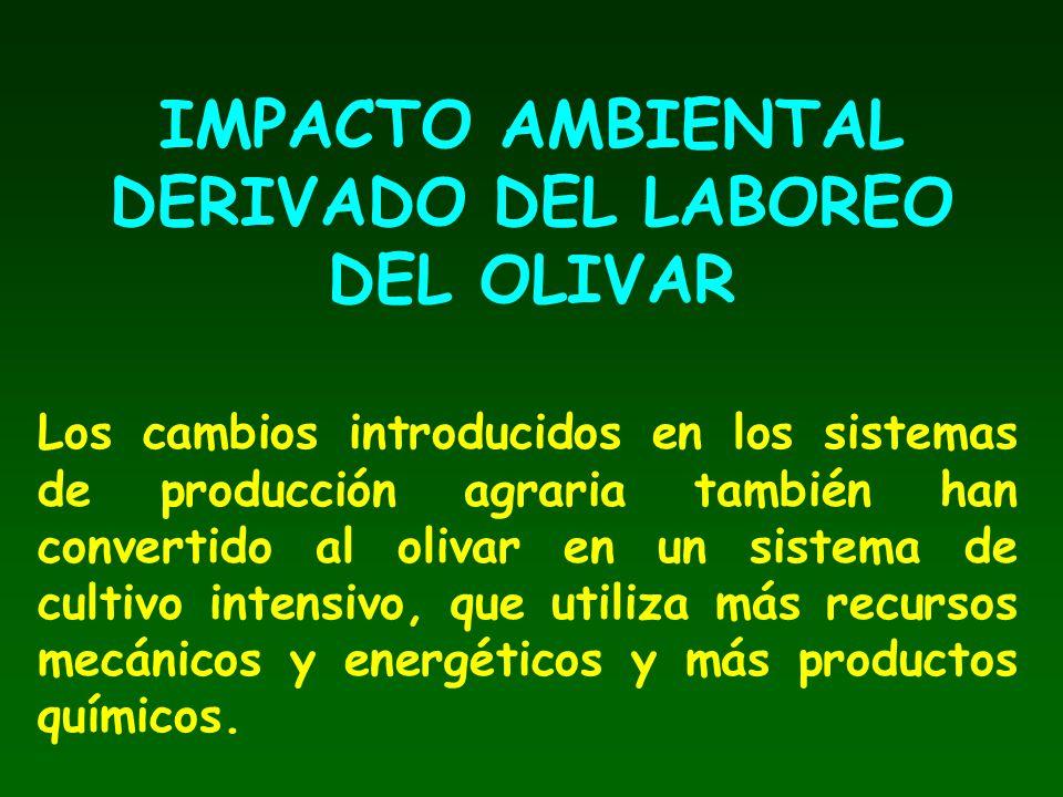 IMPACTO AMBIENTAL DERIVADO DEL LABOREO DEL OLIVAR Los cambios introducidos en los sistemas de producción agraria también han convertido al olivar en u