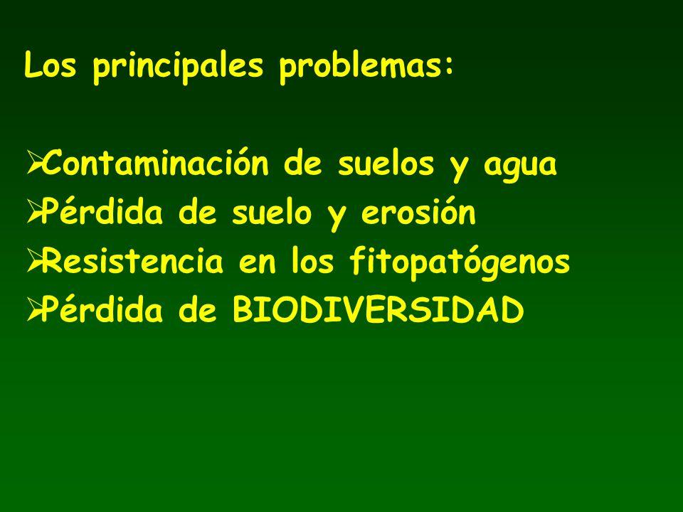 Los principales problemas: Contaminación de suelos y agua Pérdida de suelo y erosión Resistencia en los fitopatógenos Pérdida de BIODIVERSIDAD