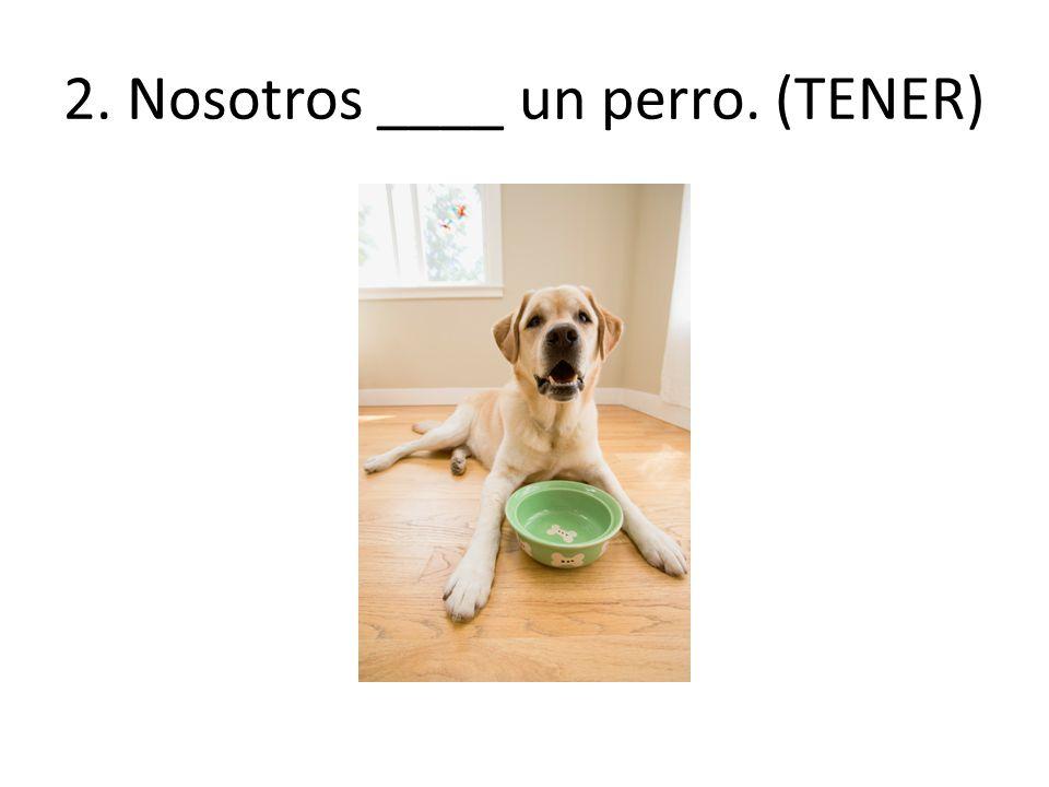 2. Nosotros ____ un perro. (TENER)