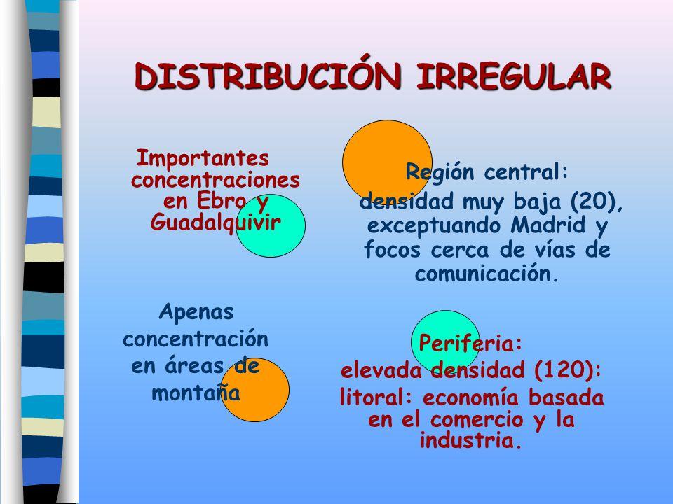 DISTRIBUCIÓN IRREGULAR Importantes concentraciones en Ebro y Guadalquivir Región central: densidad muy baja (20), exceptuando Madrid y focos cerca de