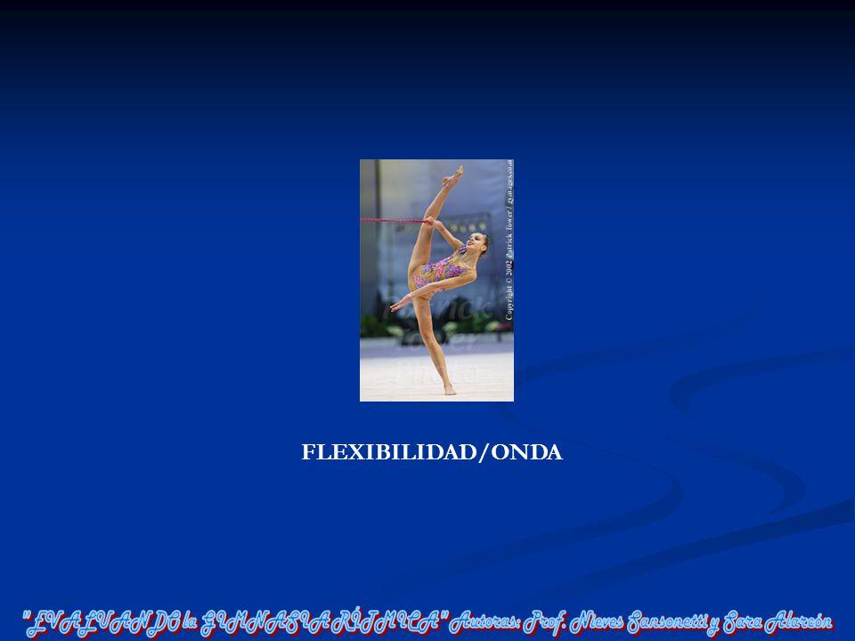 FLEXIBILIDAD/ONDA