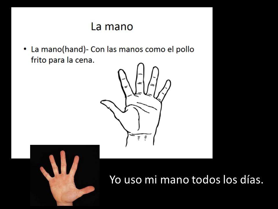 Yo uso mi mano todos los días.