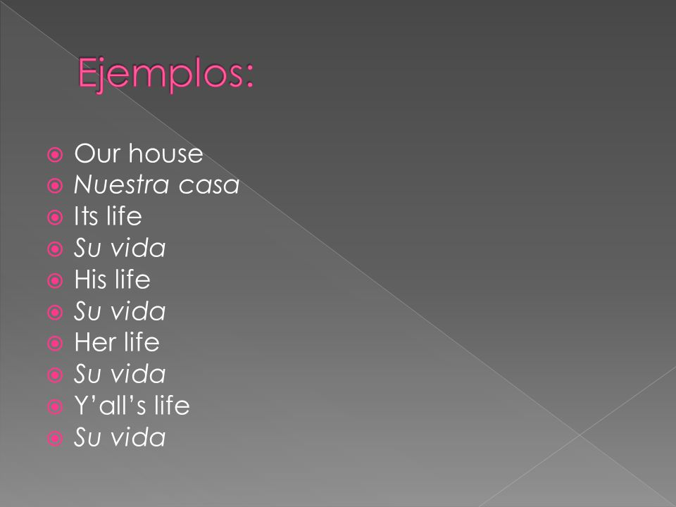 Mi(s) – my nuestro/a/os/as – our tu (s) – your su (s) – his/her/its/yoursu (s) – their/your