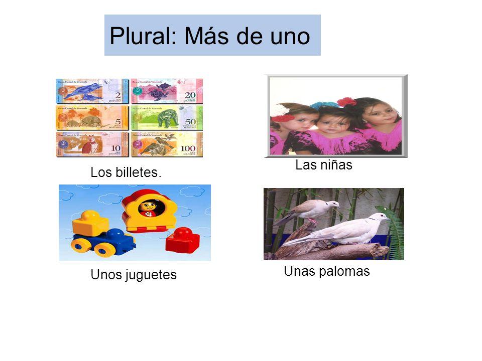 Plural: Más de uno Los billetes. Las niñas Unas palomas Unos juguetes