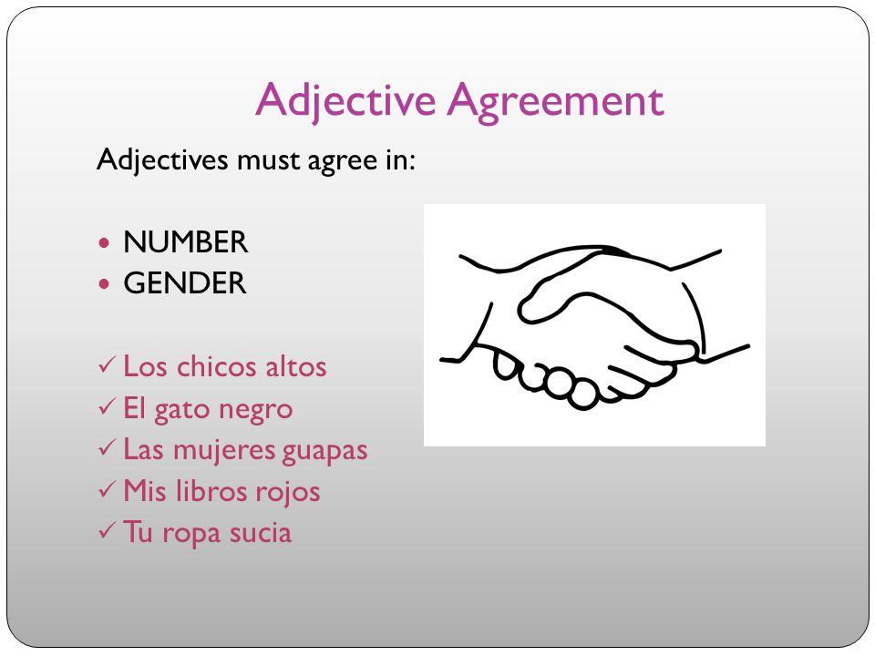 Adjective Agreement Adjectives must agree in: NUMBER GENDER Los chicos altos El gato negro Las mujeres guapas Mis libros rojos Tu ropa sucia