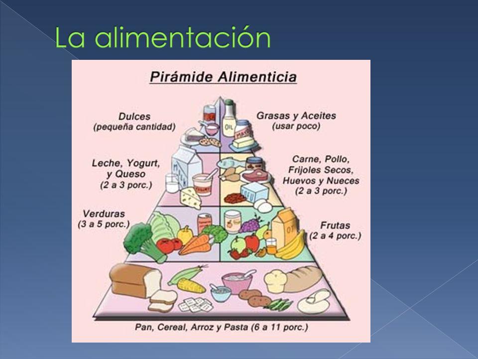 ¿Por qué es importante la alimentación.¿Cómo puedes prevenir un resfriado.