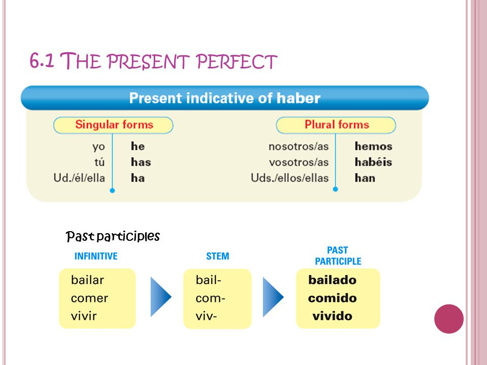 6.1 T HE PRESENT PERFECT Past participles