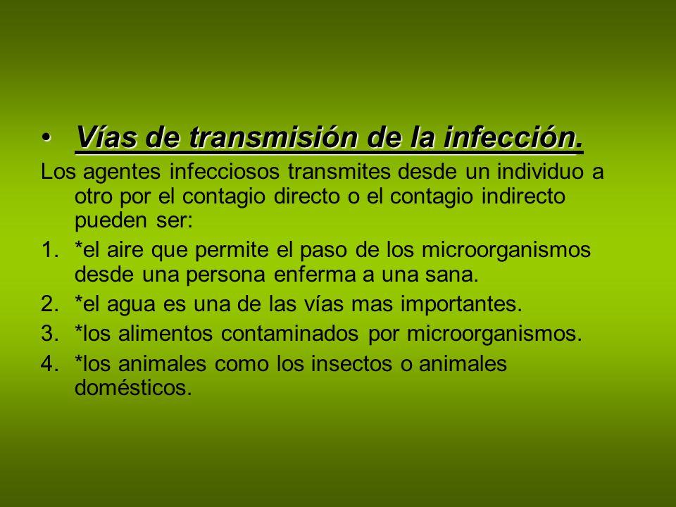 Hay dos grandes grupo de enfermedades: LAS ENFERMEDADES INFECCIOSAS Tienen su origen en la colonización del cuerpo por parte de agentes infecciosos o en la ingestación por parásitos