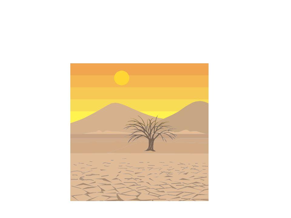 El desierto tiene un clima seco / árido.