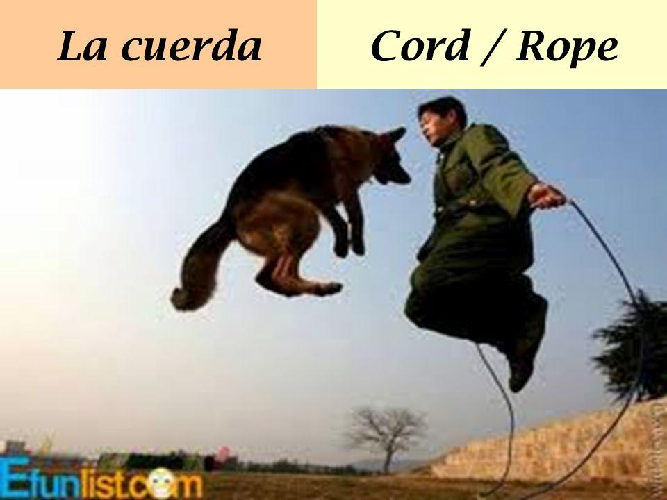 La cuerdaCord / Rope
