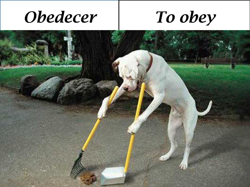 ObedecerTo obey