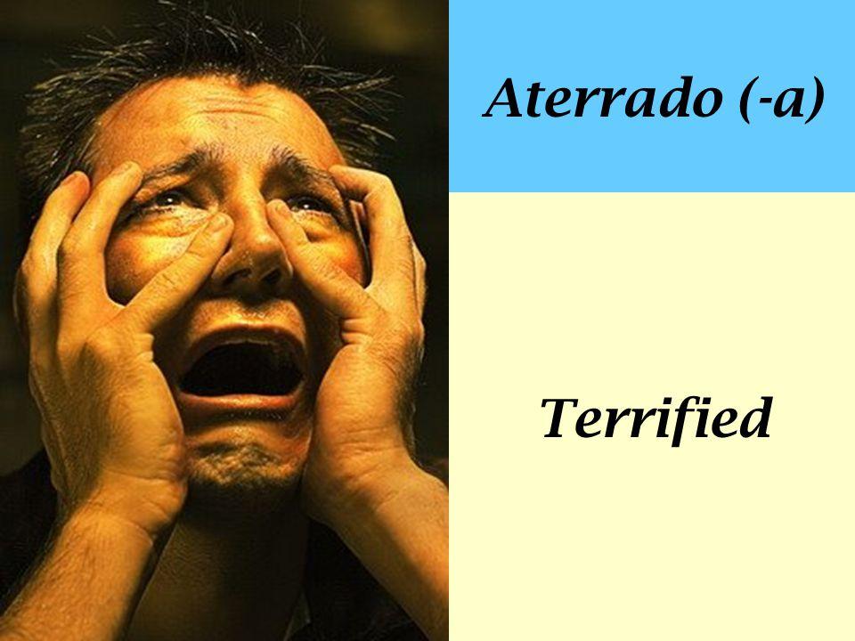 Aterrado (-a) Terrified