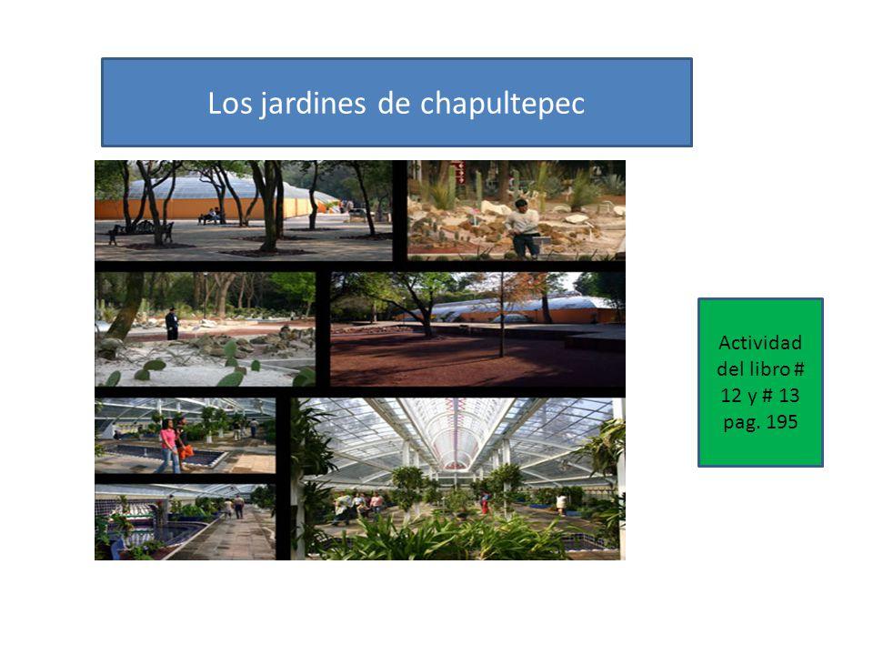 Los jardines de chapultepec Actividad del libro # 12 y # 13 pag. 195