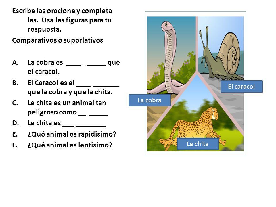 Escribe las oracione y completa las. Usa las figuras para tu respuesta. Comparativos o superlativos A.La cobra es ____ _____ que el caracol. B.El Cara
