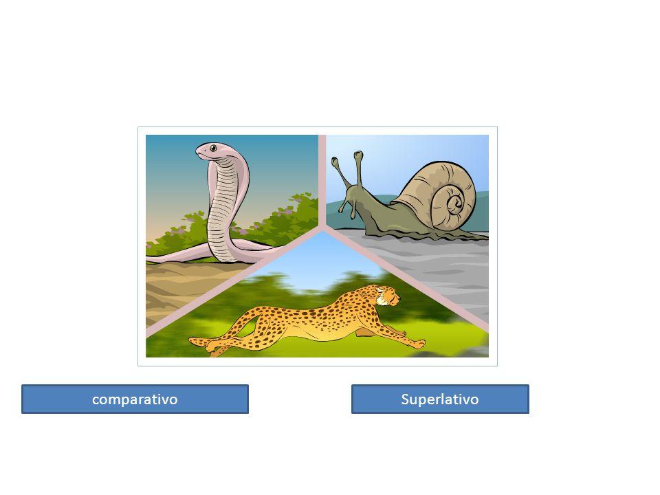 comparativoSuperlativo