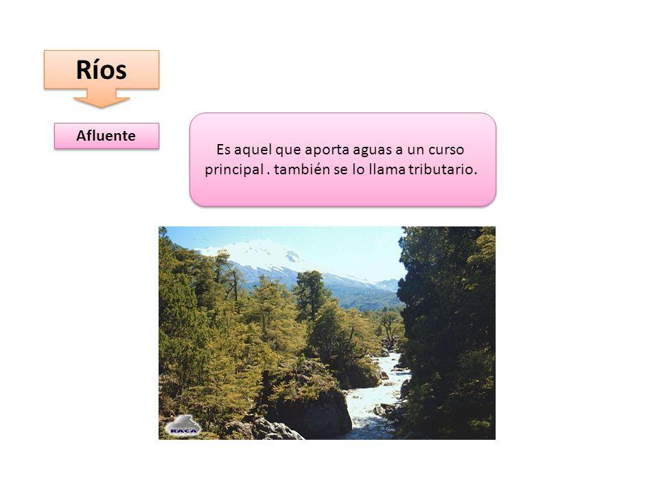 Ríos Afluente Es aquel que aporta aguas a un curso principal.