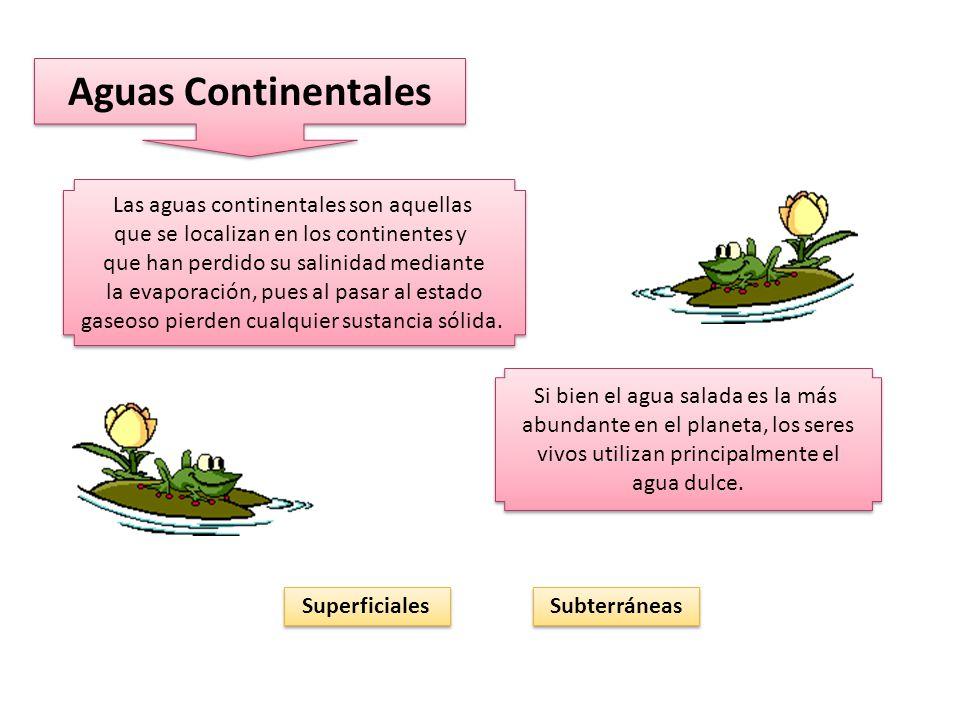 Aguas Continentales Las aguas continentales son aquellas que se localizan en los continentes y que han perdido su salinidad mediante la evaporación, pues al pasar al estado gaseoso pierden cualquier sustancia sólida.
