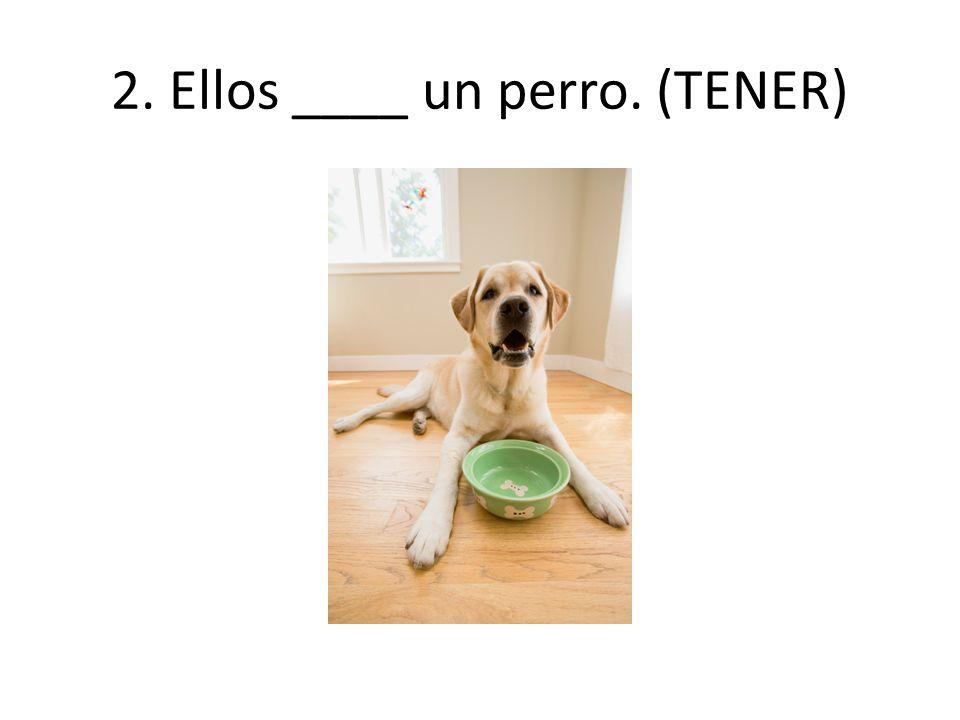 2. Ellos ____ un perro. (TENER)