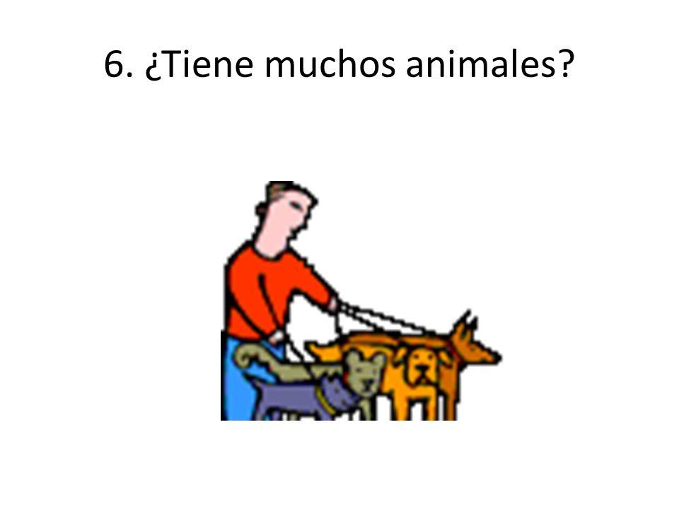 6. ¿Tiene muchos animales