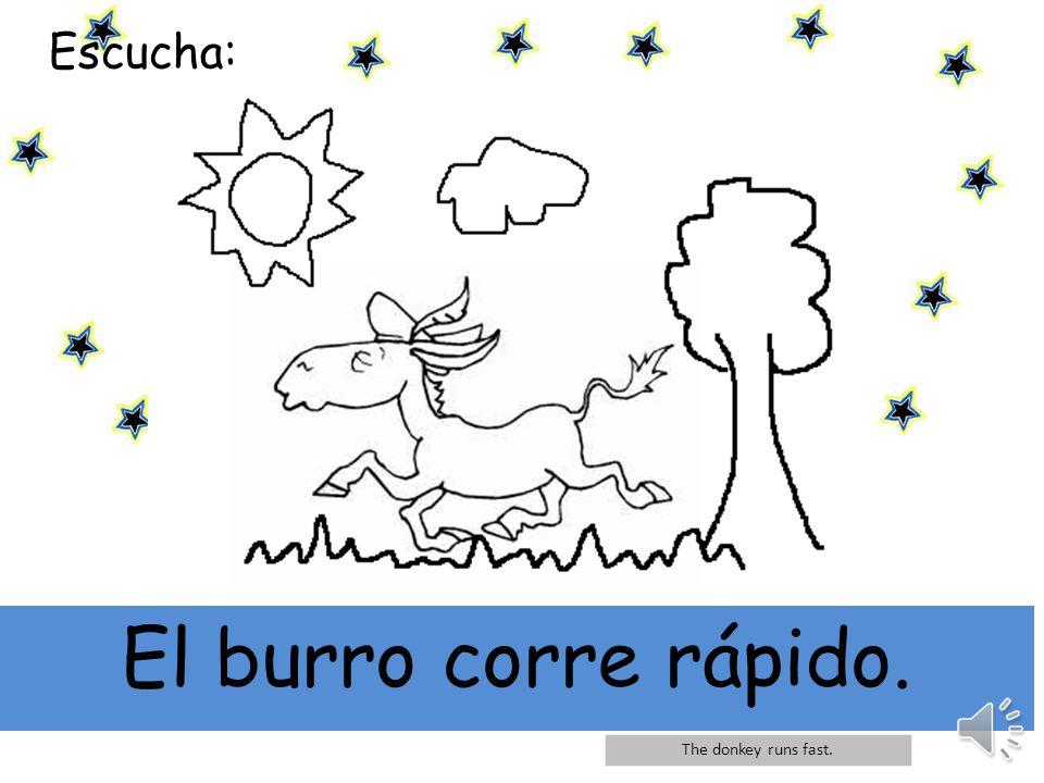 El burro corre rápido. Escucha: The donkey runs fast.