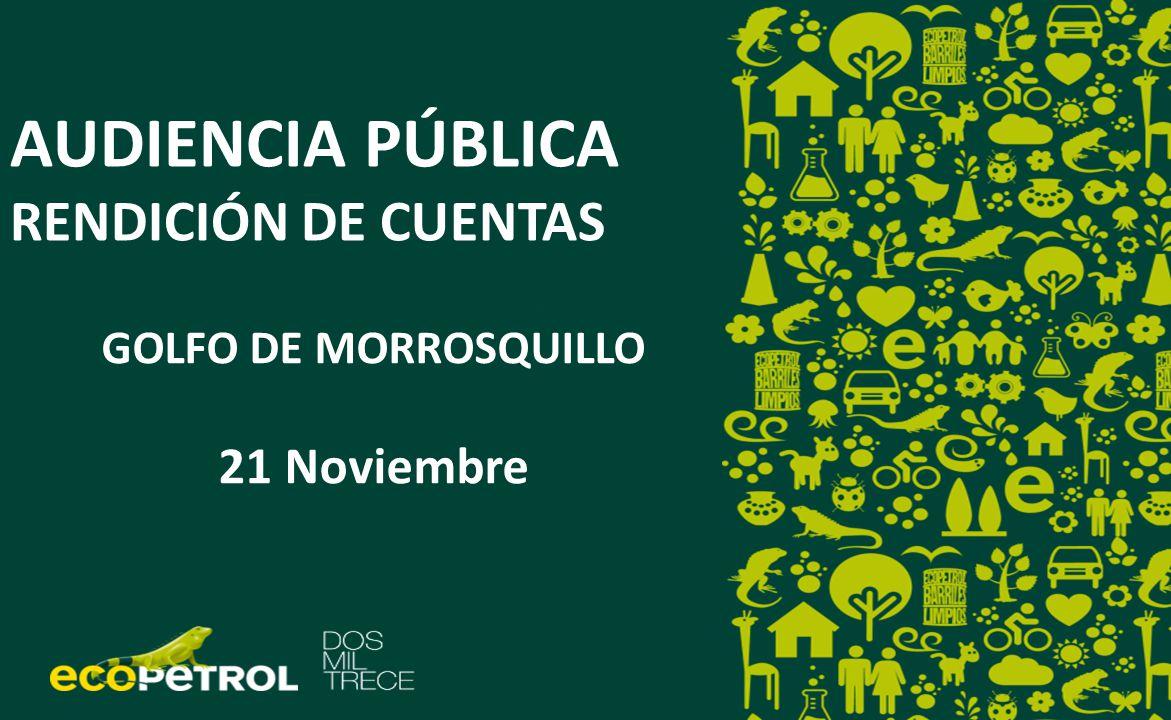 AUDIENCIA PÚBLICA RENDICIÓN DE CUENTAS RENDICIÓN DE CUENTAS GOLFO DE MORROSQUILLO 21 Noviembre