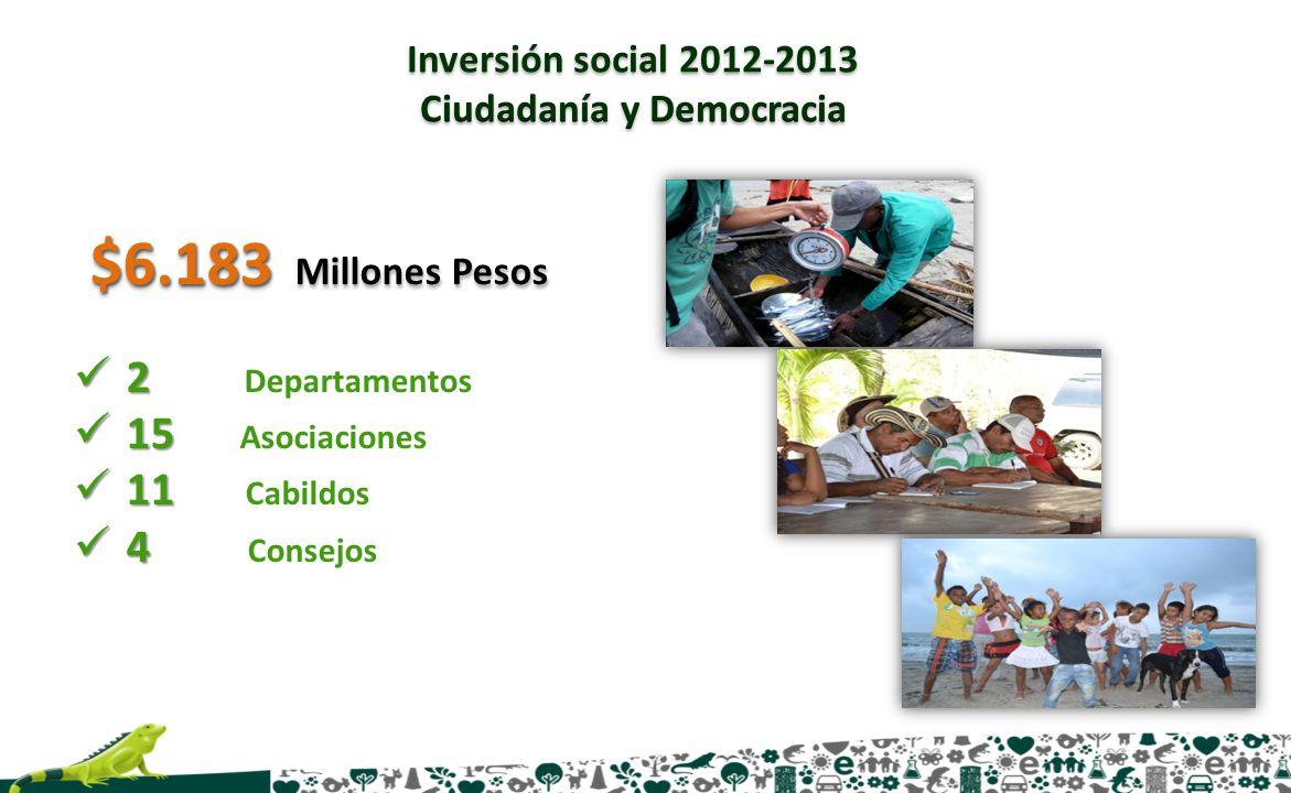 2 2 Departamentos 15 15 Asociaciones 11 11 Cabildos 4 4 Consejos $6.183 $6.183 Millones Pesos