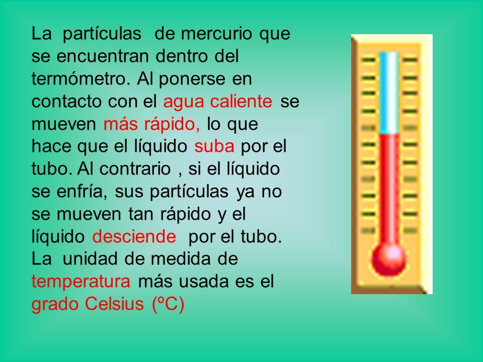 La partículas de mercurio que se encuentran dentro del termómetro.