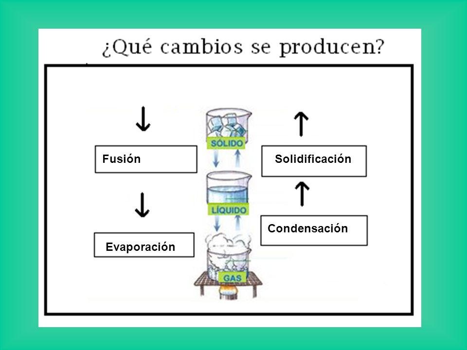 Solidificación Evaporación Fusión Condensación