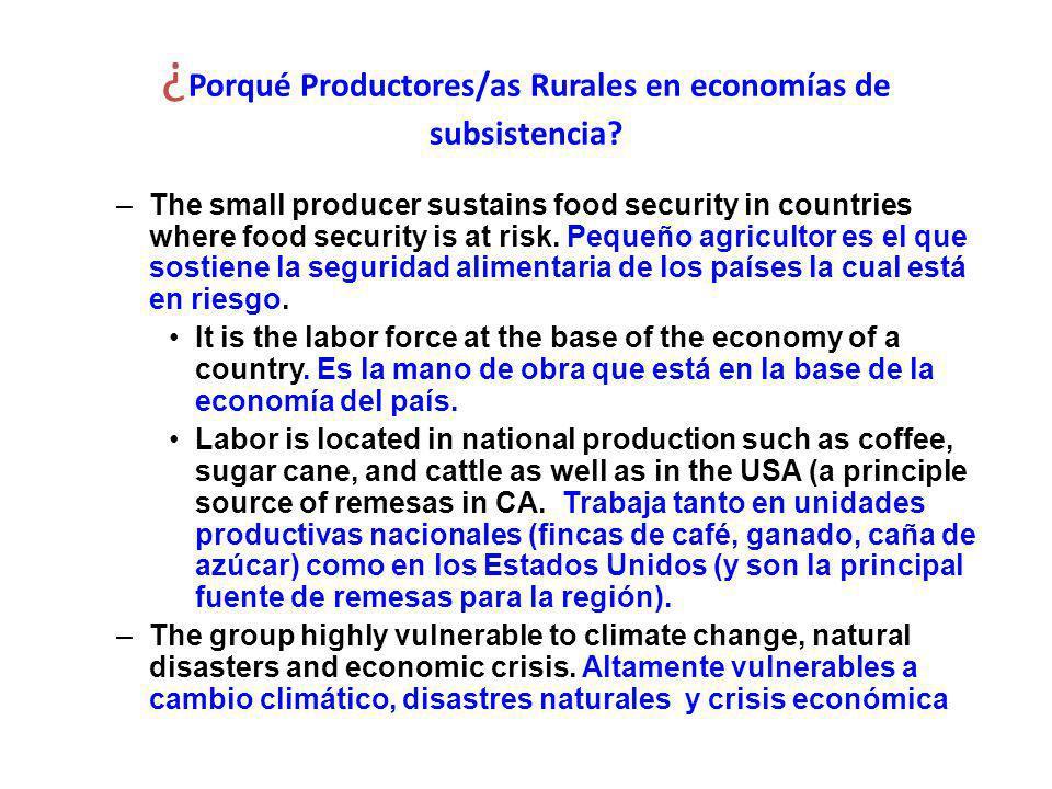 ¿ Porqué Productores/as Rurales en economías de subsistencia.