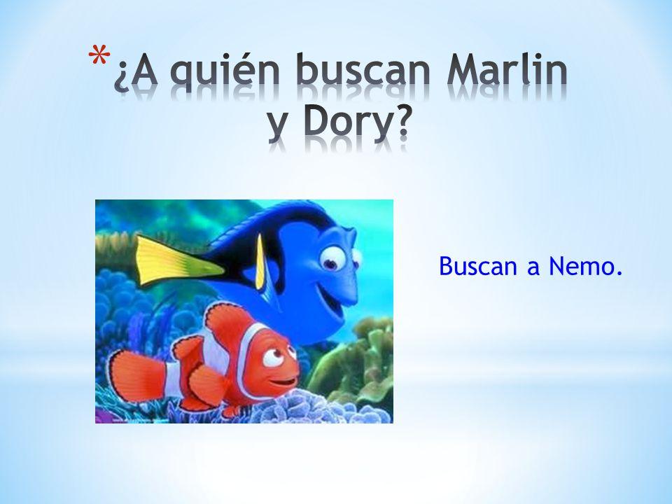 Buscan a Nemo.