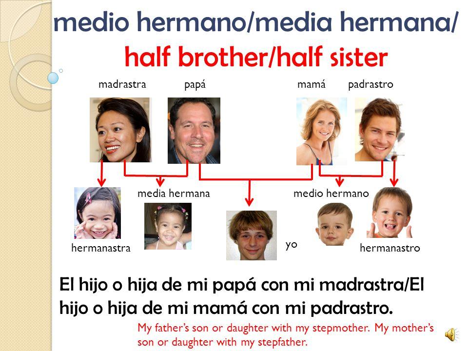 hermanastro/hermanastra/ stepbrother/stepsister El hijo o hija de mi padrastro o madrastra.