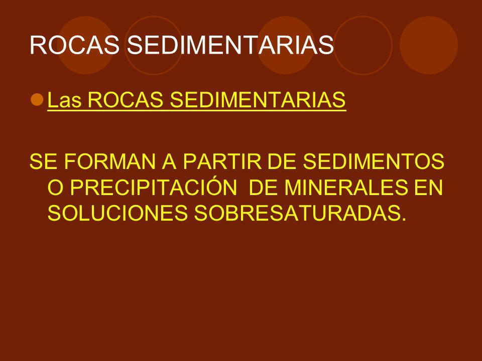 ROCAS SEDIMENTARIAS Las ROCAS SEDIMENTARIAS SE FORMAN A PARTIR DE SEDIMENTOS O PRECIPITACIÓN DE MINERALES EN SOLUCIONES SOBRESATURADAS.