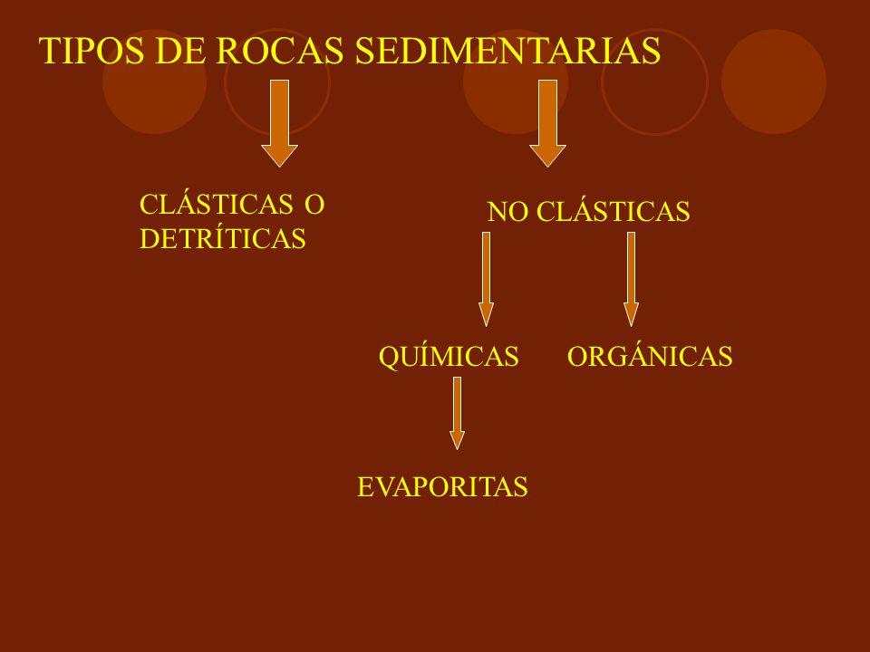 TIPOS DE ROCAS SEDIMENTARIAS CLÁSTICAS O DETRÍTICAS NO CLÁSTICAS QUÍMICASORGÁNICAS EVAPORITAS