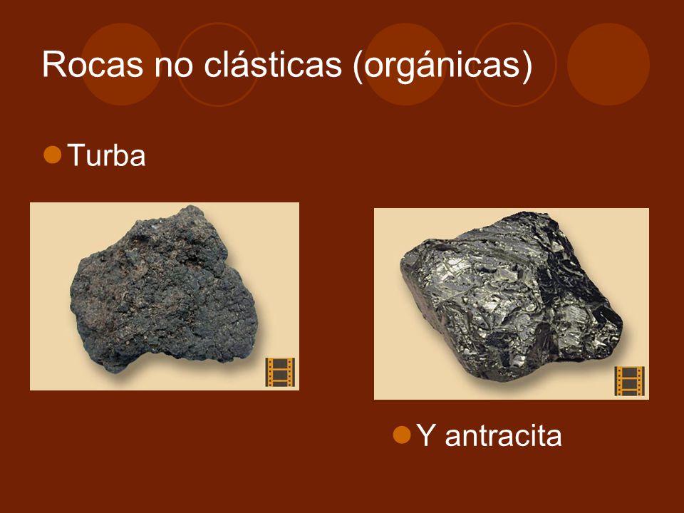 Turba Rocas no clásticas (orgánicas) Y antracita