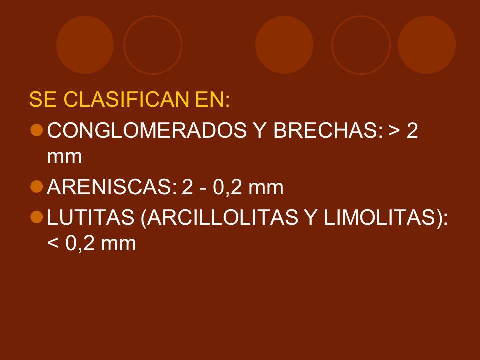 SE CLASIFICAN EN: CONGLOMERADOS Y BRECHAS: > 2 mm ARENISCAS: 2 - 0,2 mm LUTITAS (ARCILLOLITAS Y LIMOLITAS): < 0,2 mm