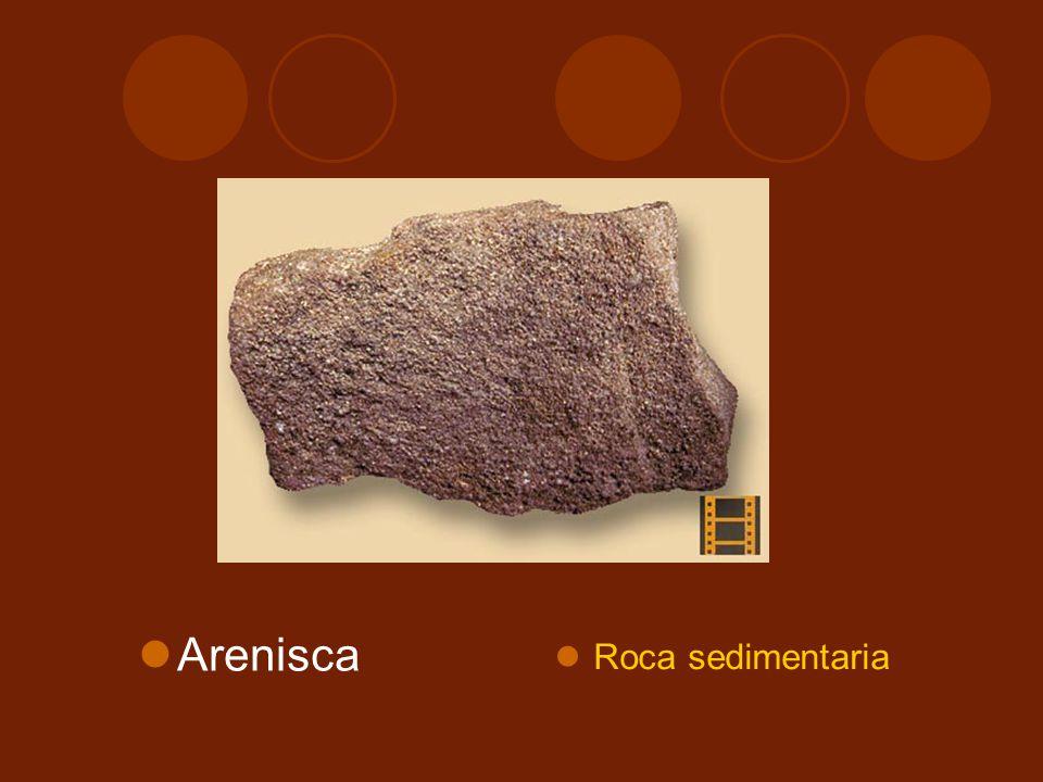 Arenisca Roca sedimentaria