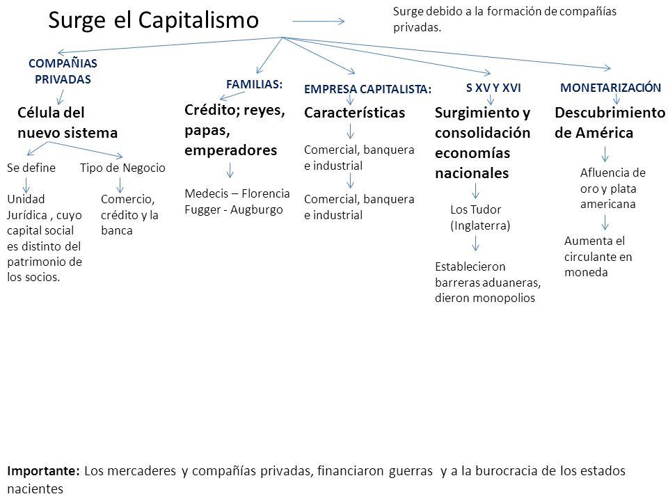 Surge el Capitalismo Célula del nuevo sistema Se define Surge debido a la formación de compañías privadas. COMPAÑIAS PRIVADAS Medecis – Florencia Fugg